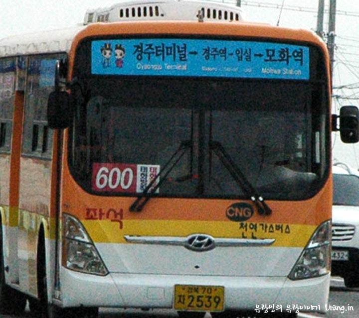경주 600번 시내버스