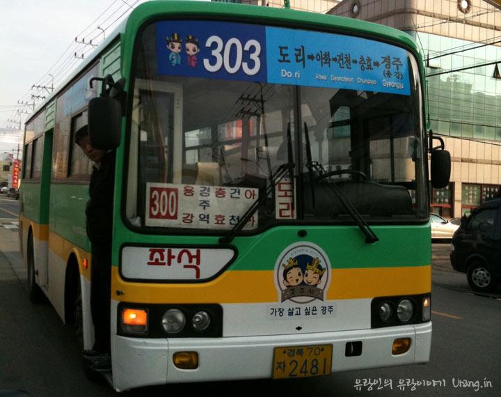 경주 303번 시내버스