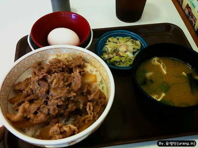 Japan a bowl of rice topped with beef