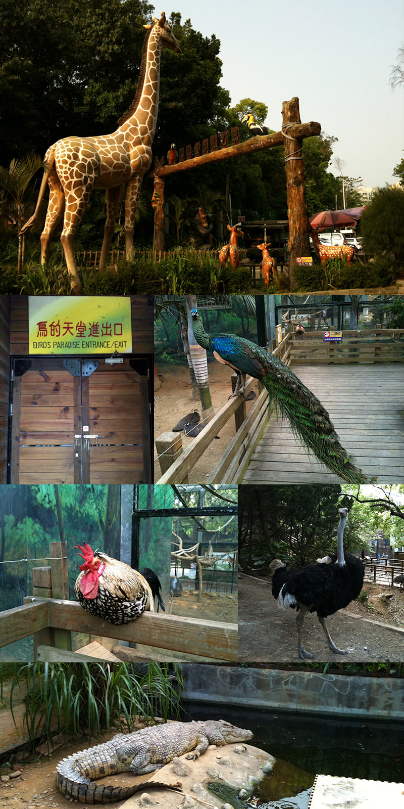 Hsinchu_City_Zoo_in_Taiwan.jpg
