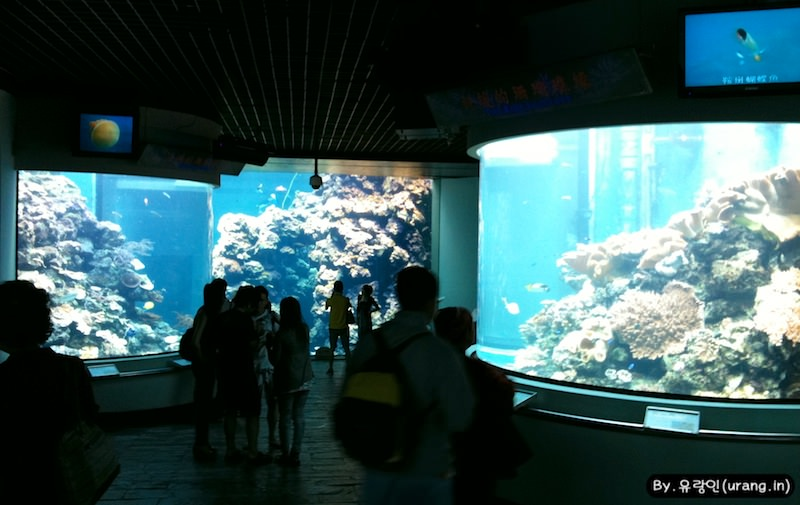 Taiwan Checheng Natioanl Museum of Marinebiology and Aquarium 01