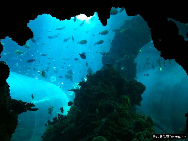 해저동굴 구역